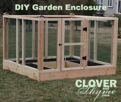 DIY Garden Enclosure Clover and Thyme