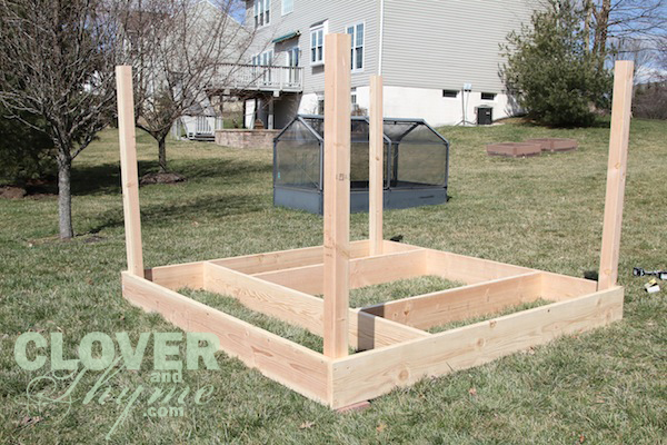 DIY Garden Enclosure Clover and Thyme
