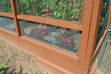 Garden Enclosure 11