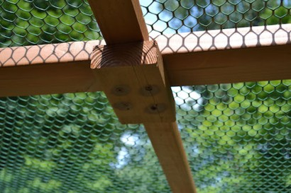 Garden Enclosure 13