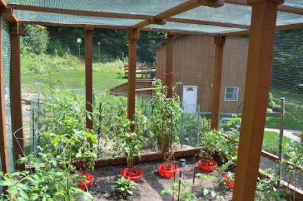 Garden Enclosure 17