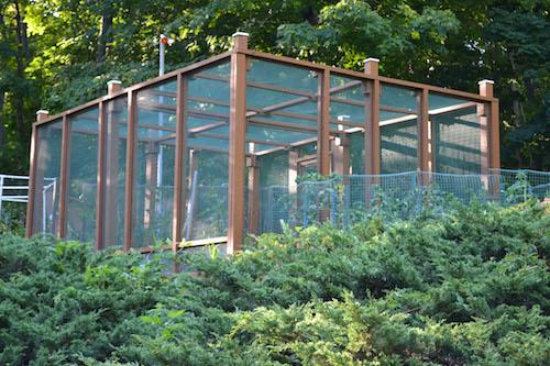 Garden Enclosure 2