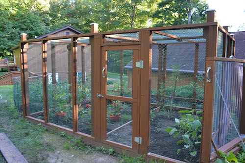 Elegant Garden Enclosure 4